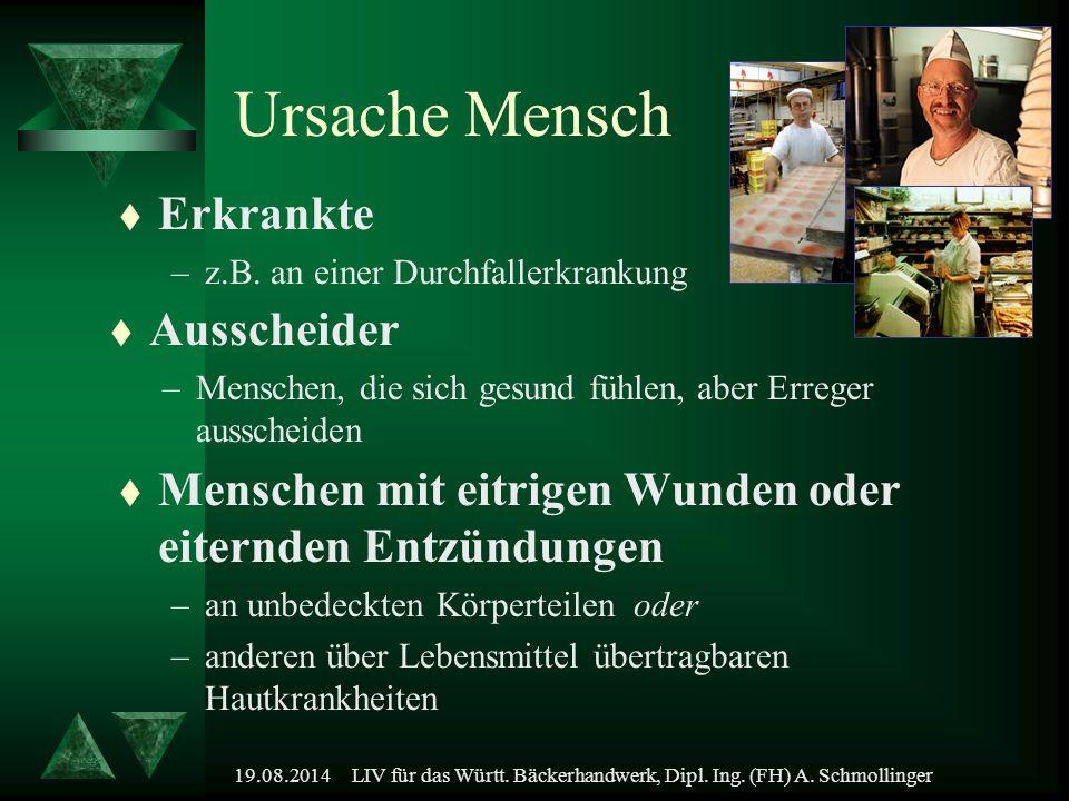19.08.2014LIV für das Württ. Bäckerhandwerk, Dipl. Ing. (FH) A. Schmollinger Ursache Mensch t Erkrankte –z.B. an einer Durchfallerkrankung t Ausscheid