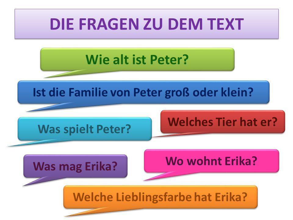 DIE FRAGEN ZU DEM TEXT Wie alt ist Peter? Ist die Familie von Peter groß oder klein? Was spielt Peter? Welches Tier hat er? Welche Lieblingsfarbe hat
