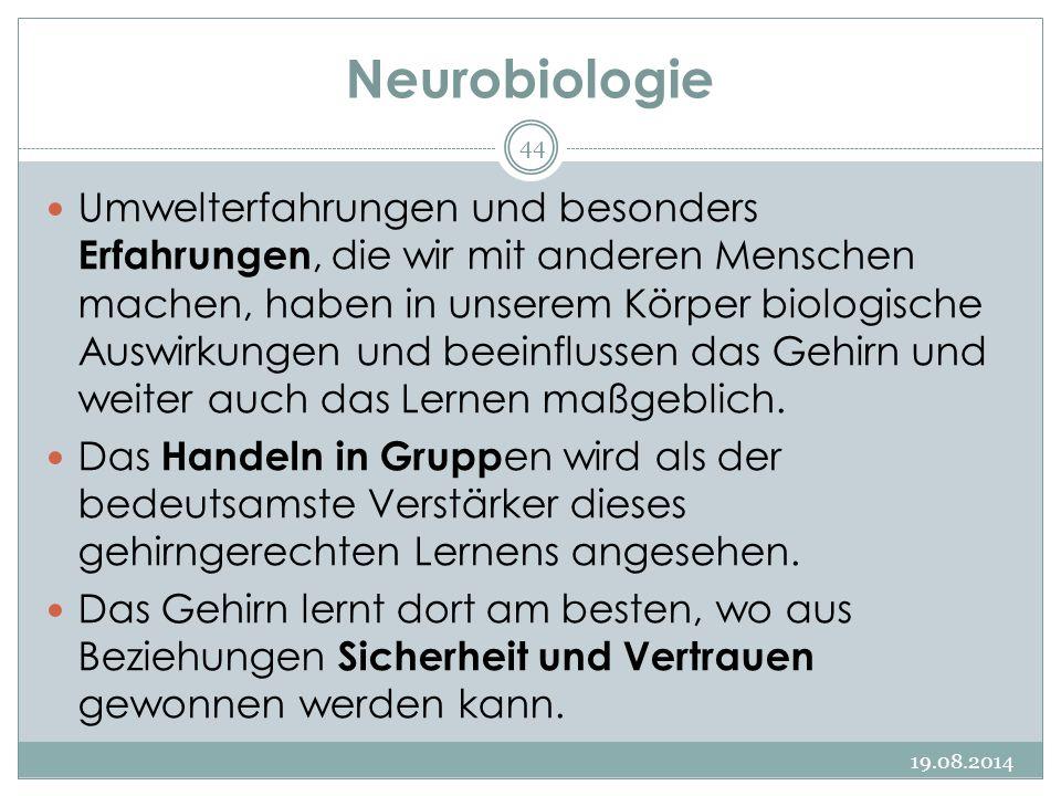 Neurobiologie 19.08.2014 44 Umwelterfahrungen und besonders Erfahrungen, die wir mit anderen Menschen machen, haben in unserem Körper biologische Auswirkungen und beeinflussen das Gehirn und weiter auch das Lernen maßgeblich.