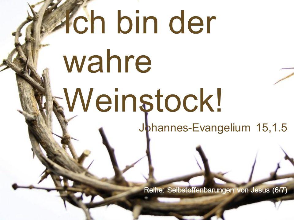 Ich bin der wahre Weinstock! Reihe: Selbstoffenbarungen von Jesus (6/7) Johannes-Evangelium 15,1.5