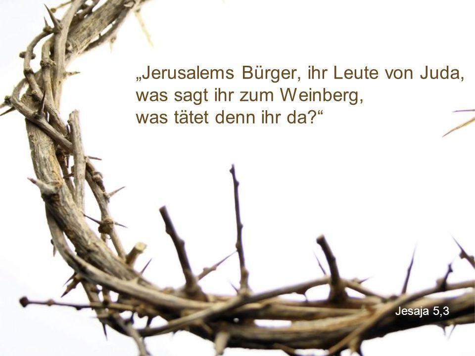 """Jesaja 5,3 """"Jerusalems Bürger, ihr Leute von Juda, was sagt ihr zum Weinberg, was tätet denn ihr da?"""""""