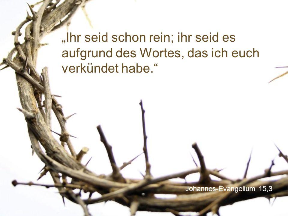 """Johannes-Evangelium 15,3 """"Ihr seid schon rein; ihr seid es aufgrund des Wortes, das ich euch verkündet habe."""
