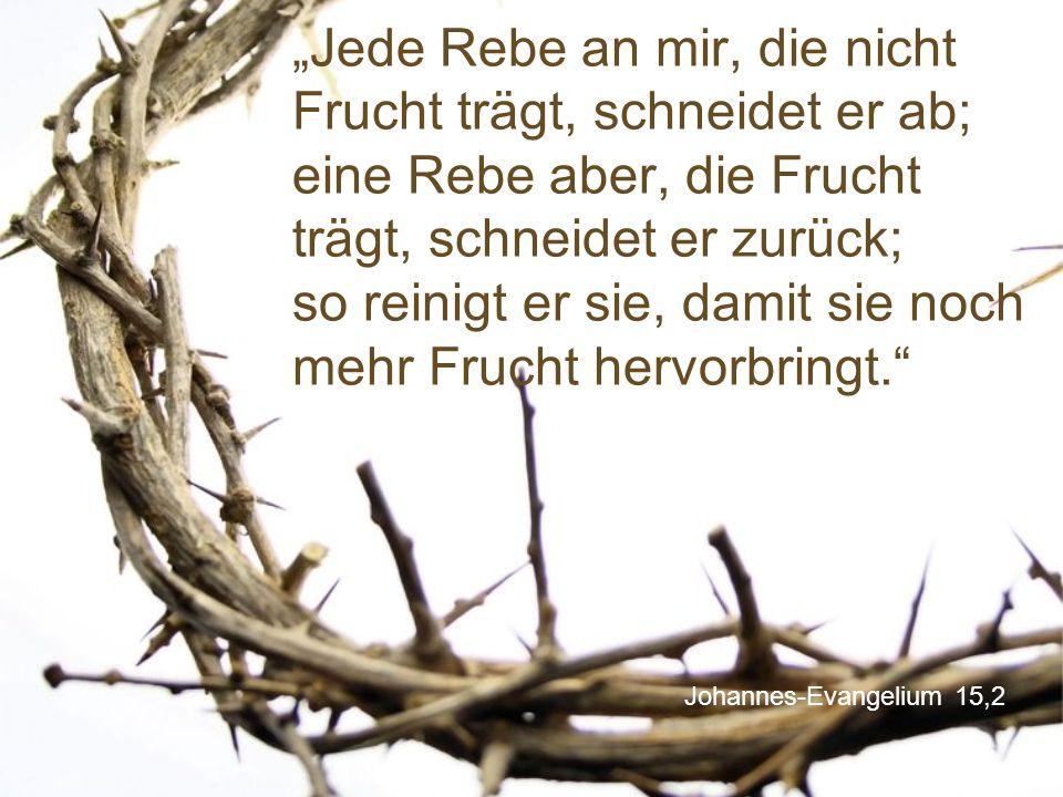 """Johannes-Evangelium 15,2 """"Jede Rebe an mir, die nicht Frucht trägt, schneidet er ab; eine Rebe aber, die Frucht trägt, schneidet er zurück; so reinigt er sie, damit sie noch mehr Frucht hervorbringt."""