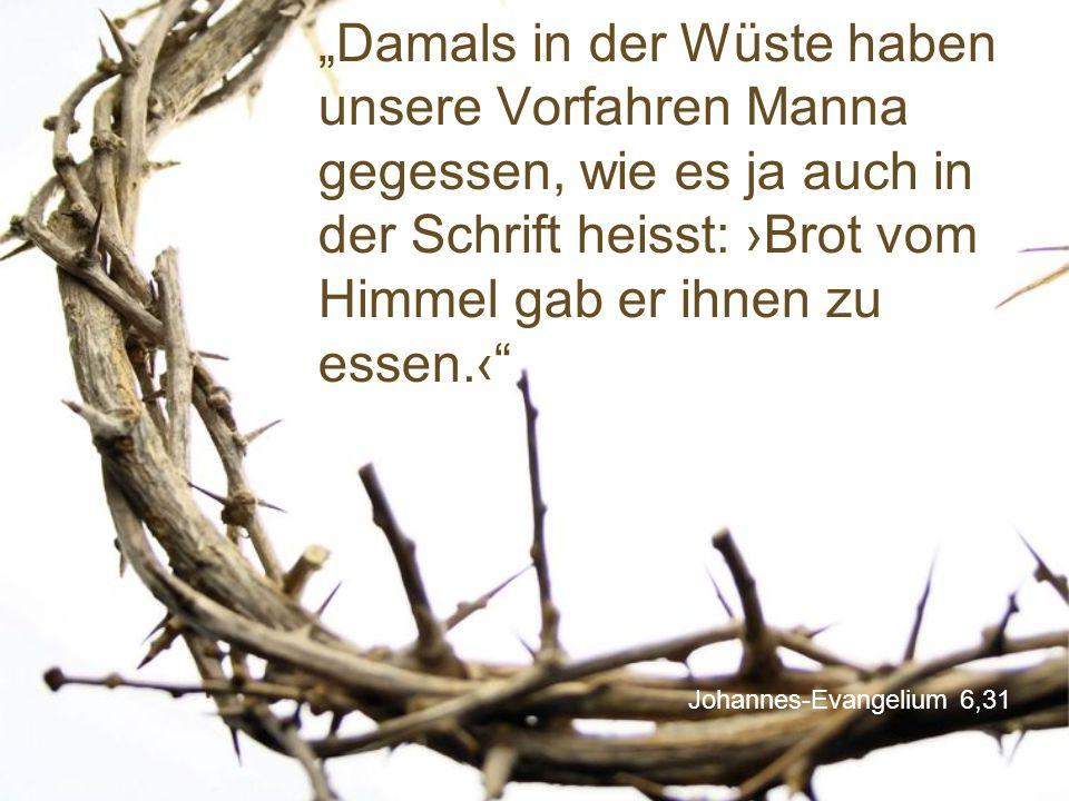 """Johannes-Evangelium 6,31 """"Damals in der Wüste haben unsere Vorfahren Manna gegessen, wie es ja auch in der Schrift heisst: ›Brot vom Himmel gab er ihnen zu essen.‹"""