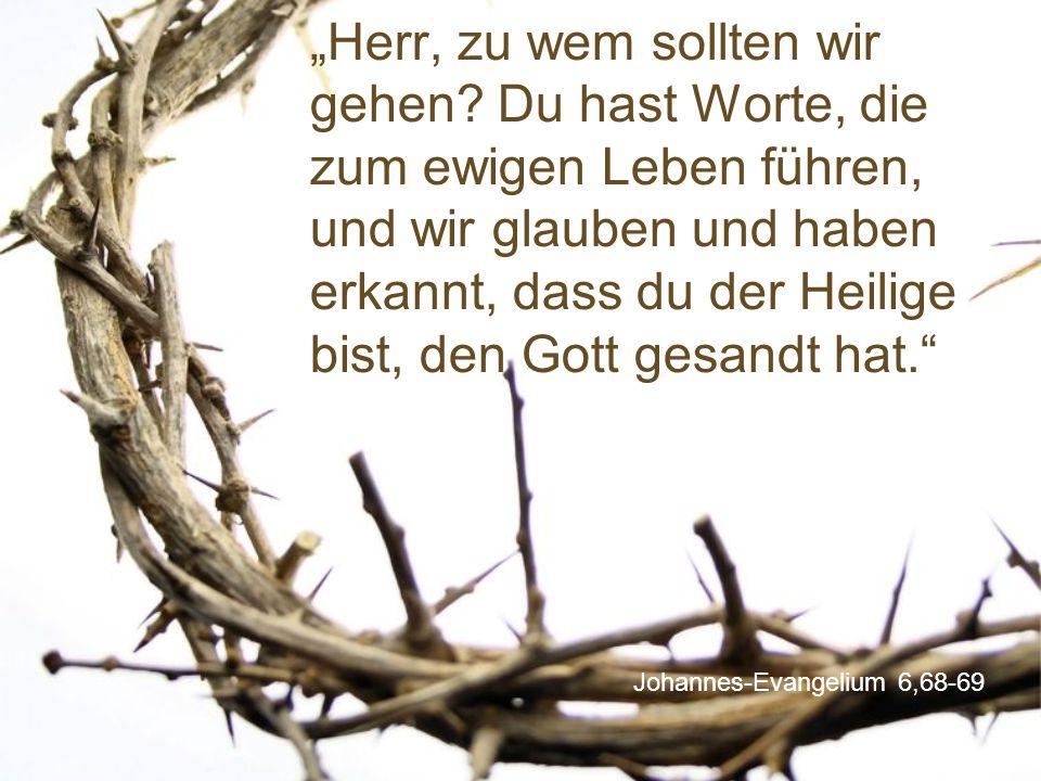"""Johannes-Evangelium 6,68-69 """"Herr, zu wem sollten wir gehen? Du hast Worte, die zum ewigen Leben führen, und wir glauben und haben erkannt, dass du de"""