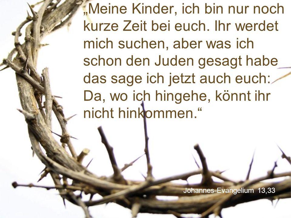 """Johannes-Evangelium 13,33 """"Meine Kinder, ich bin nur noch kurze Zeit bei euch. Ihr werdet mich suchen, aber was ich schon den Juden gesagt habe das sa"""