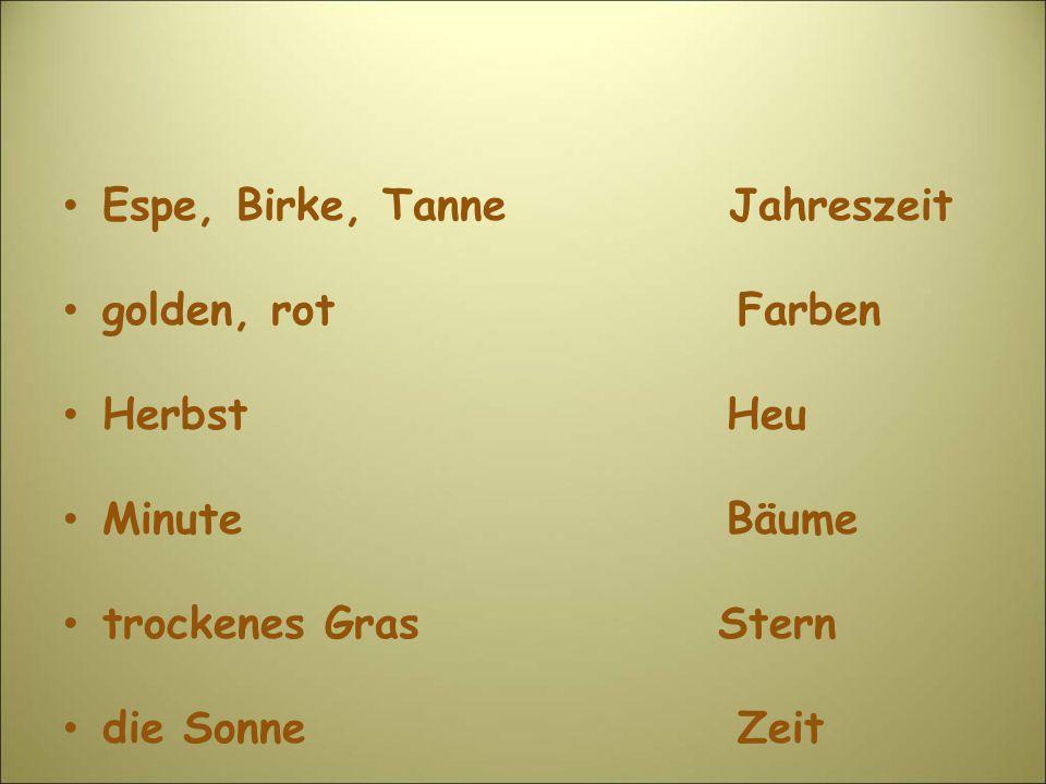 Espe, Birke, Tanne Jahreszeit golden, rot Farben Herbst Heu Minute Bäume trockenes Gras Stern die Sonne Zeit