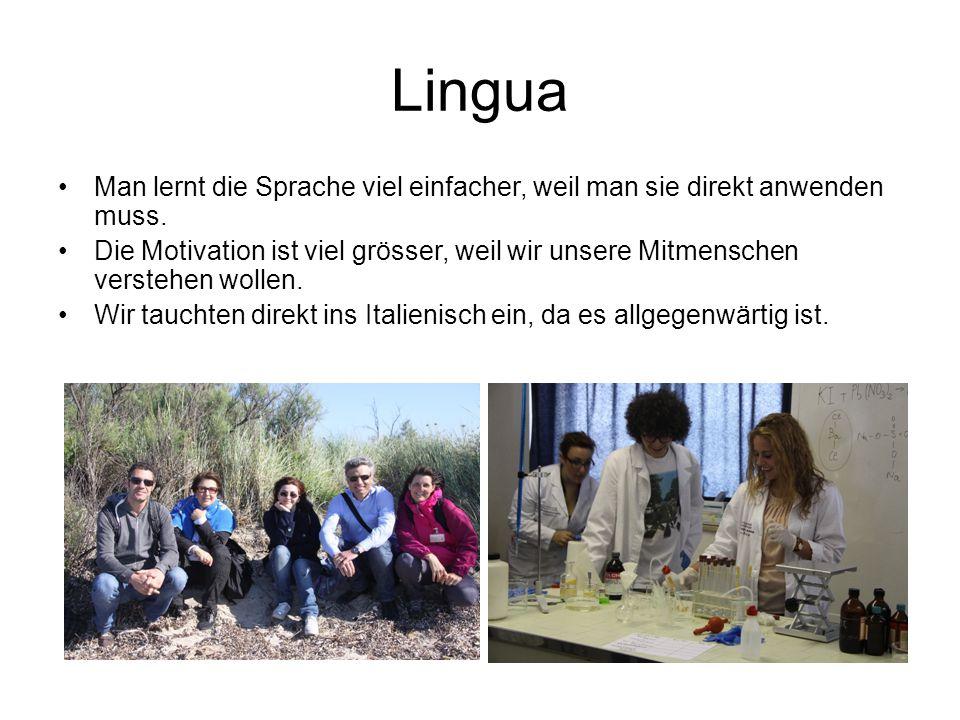 Lingua Man lernt die Sprache viel einfacher, weil man sie direkt anwenden muss.