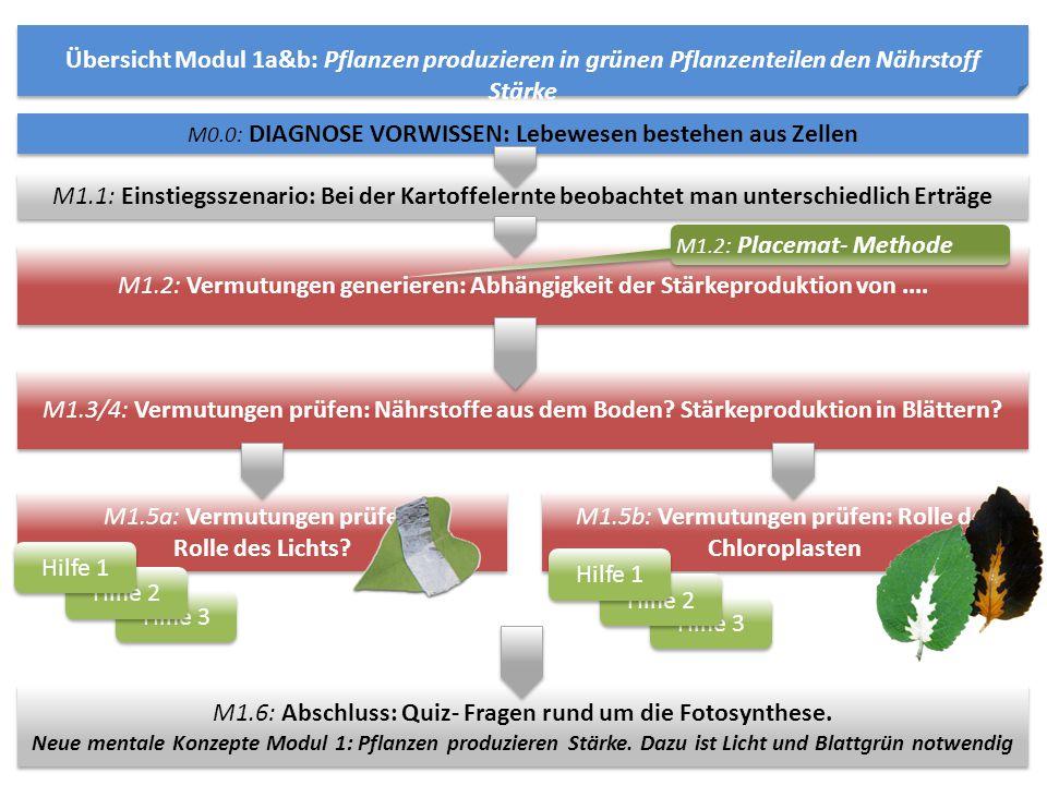Übersicht Modul 1a&b: Pflanzen produzieren in grünen Pflanzenteilen den Nährstoff Stärke M1.5a: Vermutungen prüfen: Rolle des Lichts? M1.5a: Vermutung