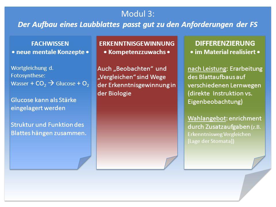 Modul 3: Der Aufbau eines Laubblattes passt gut zu den Anforderungen der FS DIFFERENZIERUNG im Material realisiert nach Leistung: Erarbeitung des Blat
