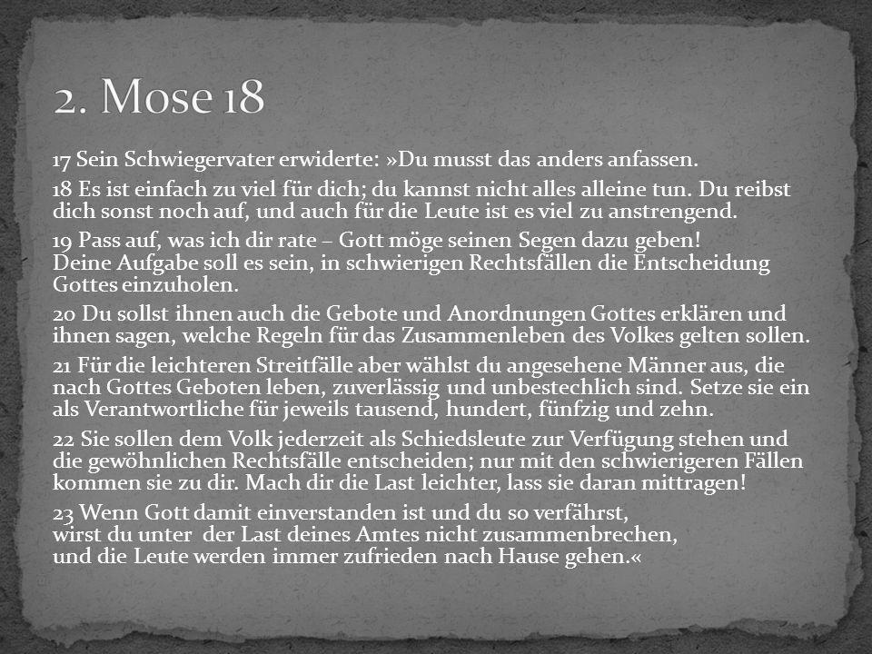 24 Mose nahm den Rat seines Schwiegervaters an und handelte danach.