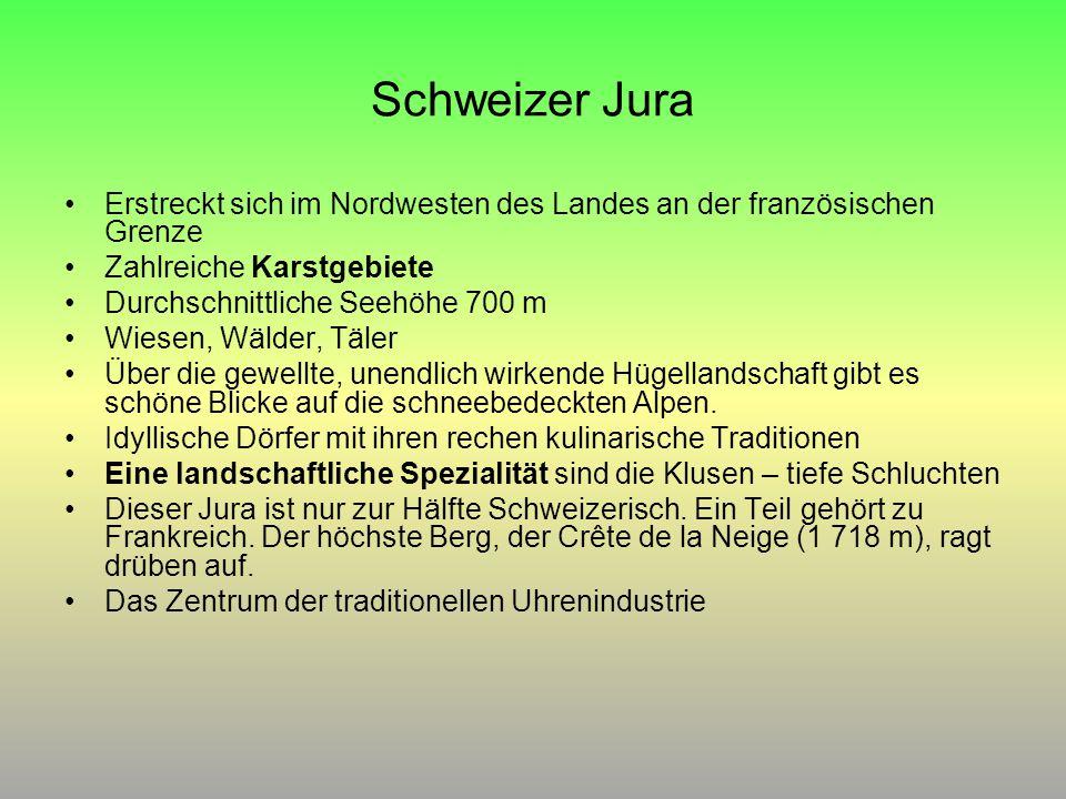 Schweizer Jura Erstreckt sich im Nordwesten des Landes an der französischen Grenze Zahlreiche Karstgebiete Durchschnittliche Seehöhe 700 m Wiesen, Wäl