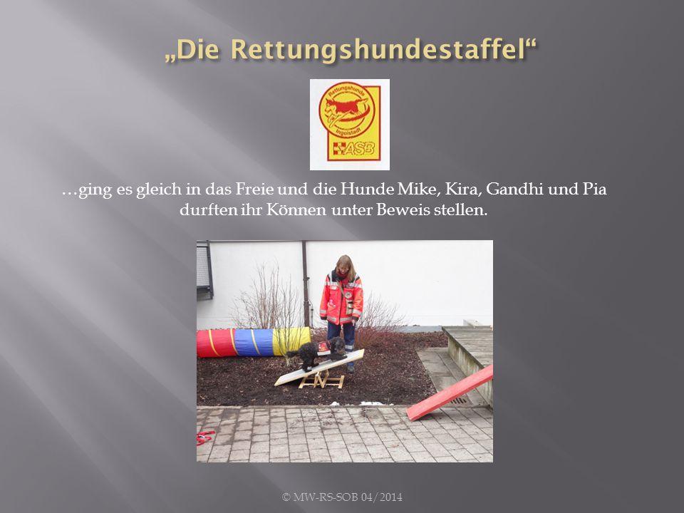 …ging es gleich in das Freie und die Hunde Mike, Kira, Gandhi und Pia durften ihr Können unter Beweis stellen.