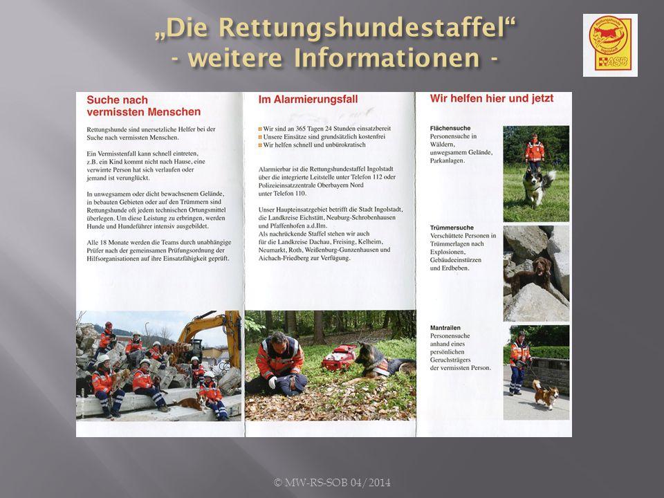 Kosten: Die Hundestaffel des ASB-Ingolstadt kommt auf Spendenbasis.