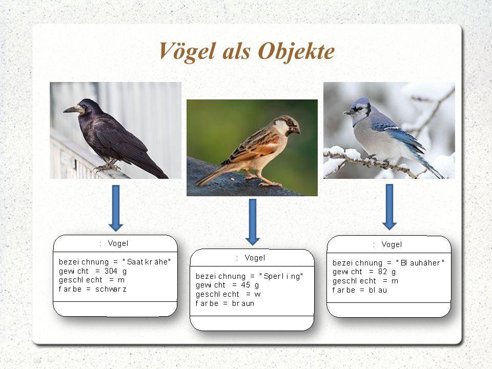 Vögel als Objekte