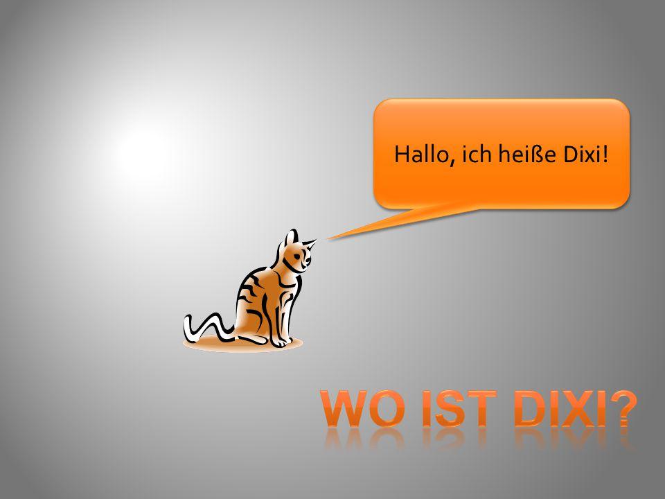 Hallo, ich hei ße Dixi!