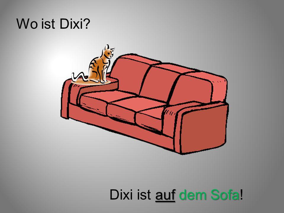 Wo ist Dixi? auf dem Sofa Dixi ist auf dem Sofa!