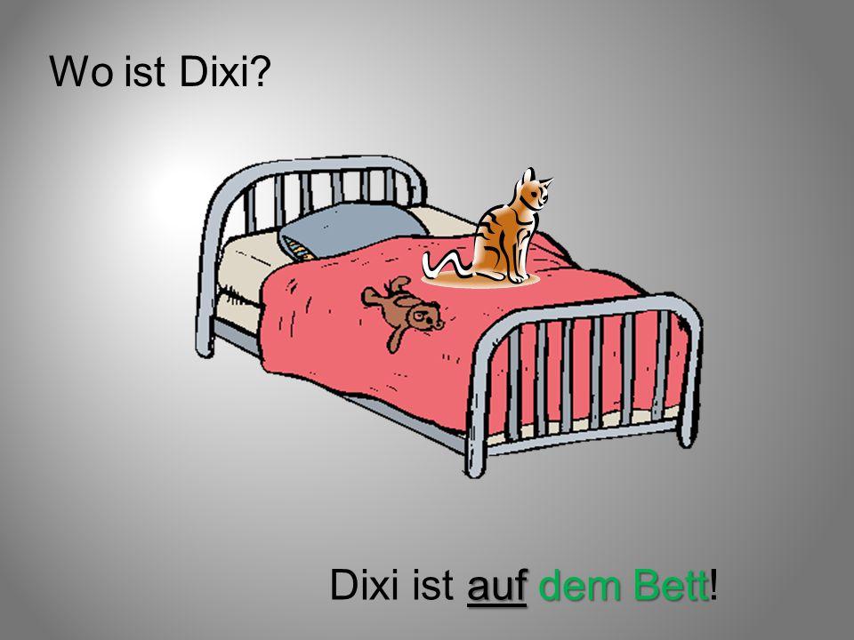 Wo ist Dixi? auf dem Bett Dixi ist auf dem Bett!