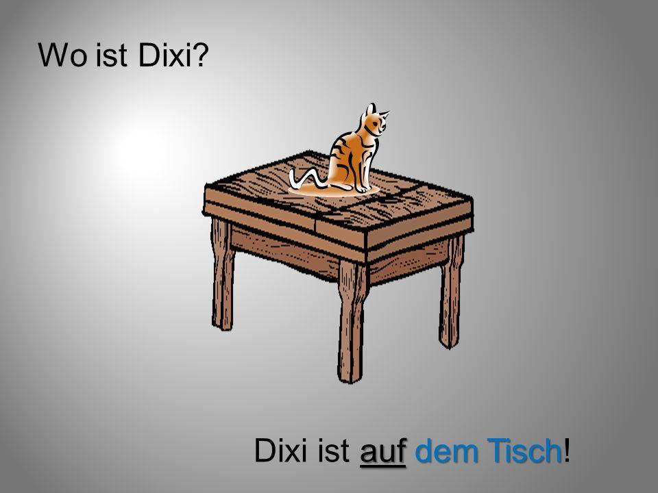Wo ist Dixi? auf dem Tisch Dixi ist auf dem Tisch!