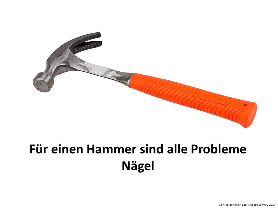 Für einen Hammer sind alle Probleme Nägel Mehrsprachigkeit Bad Wildbad Semrau 2014