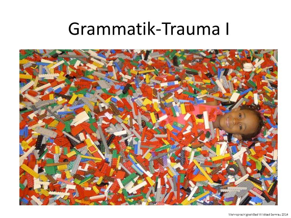 Grammatik-Trauma I Mehrsprachigkeit Bad Wildbad Semrau 2014