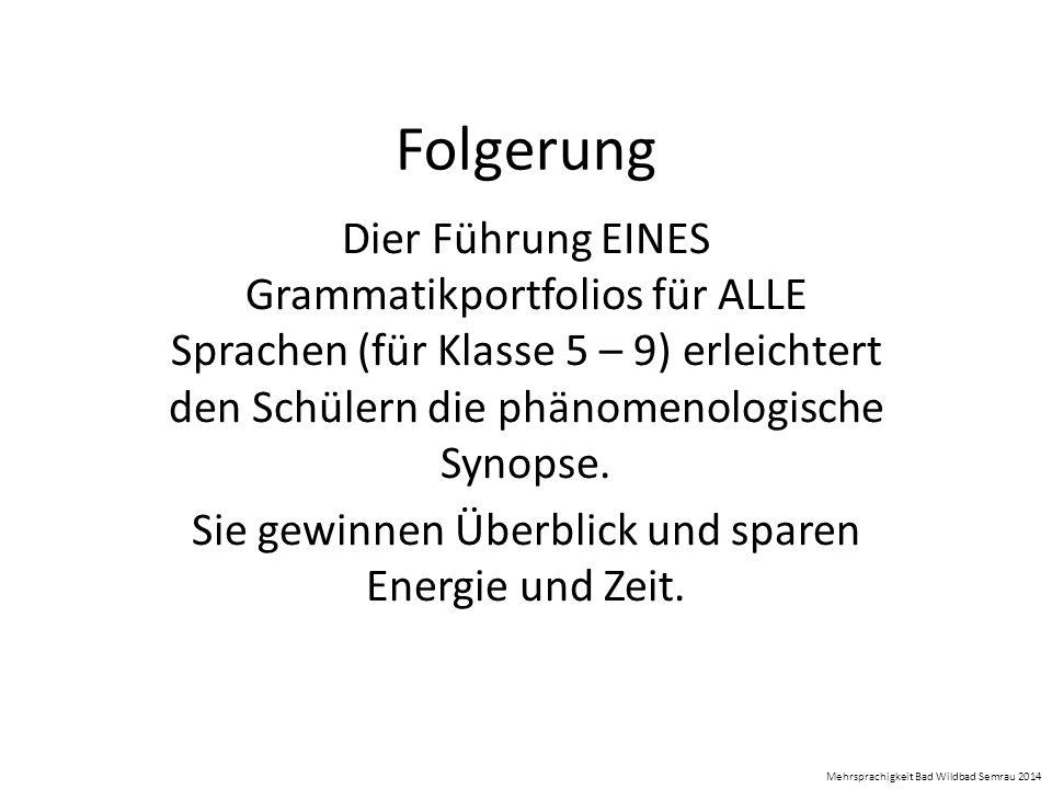 Folgerung Dier Führung EINES Grammatikportfolios für ALLE Sprachen (für Klasse 5 – 9) erleichtert den Schülern die phänomenologische Synopse. Sie gewi