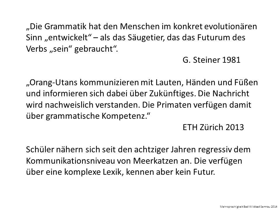 """""""Die Grammatik hat den Menschen im konkret evolutionären Sinn """"entwickelt"""" – als das Säugetier, das das Futurum des Verbs """"sein"""" gebraucht"""". G. Steine"""