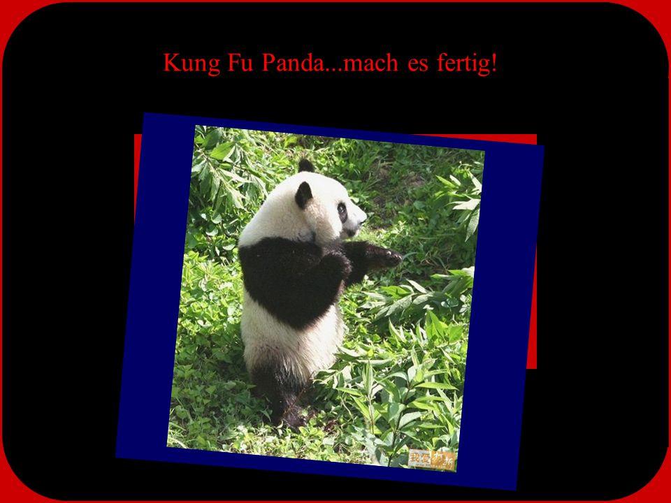 Kung Fu Panda...mach es fertig!