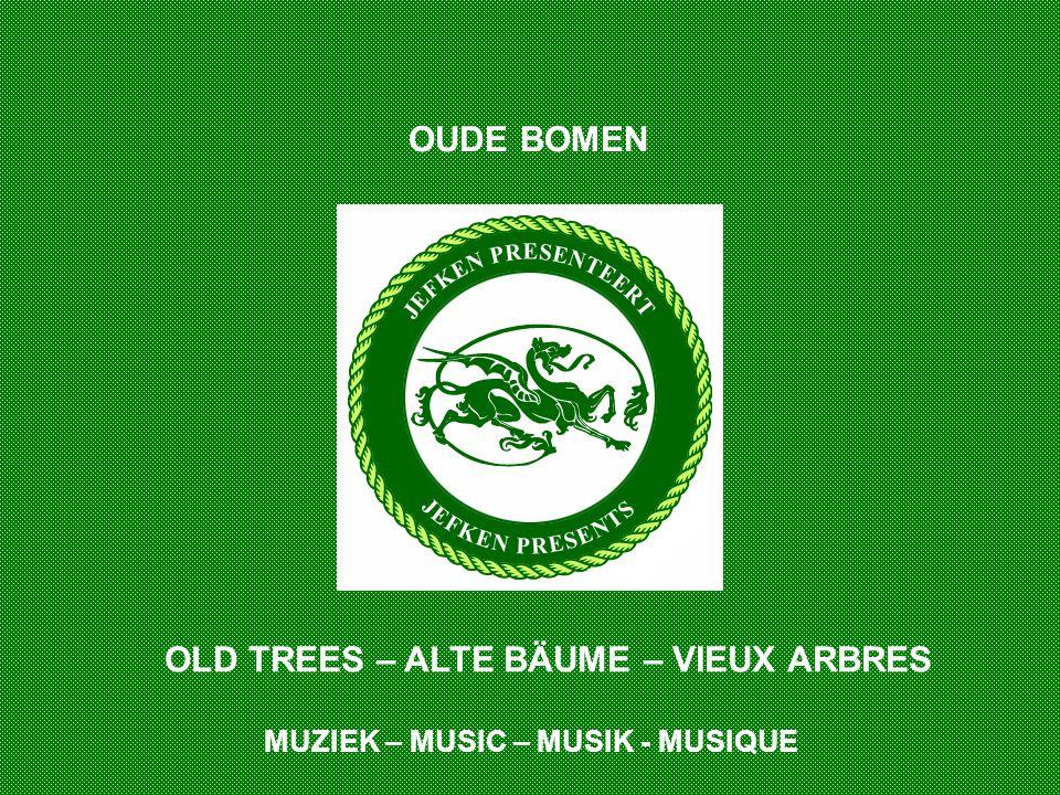 OLD TREES – ALTE BÄUME – VIEUX ARBRES OUDE BOMEN MUZIEK – MUSIC – MUSIK - MUSIQUE