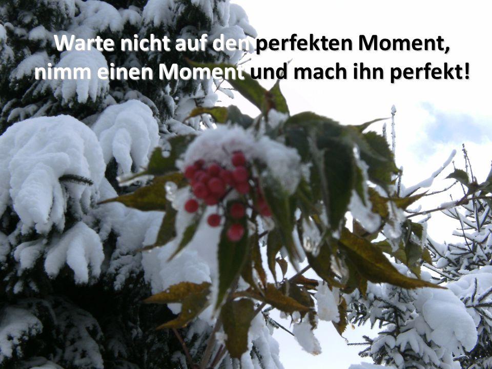 Warte nicht auf den perfekten Moment, nimm einen Moment und mach ihn perfekt!