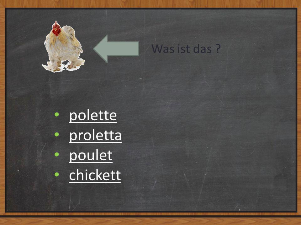 Was ist das ? polette proletta poulet chickett