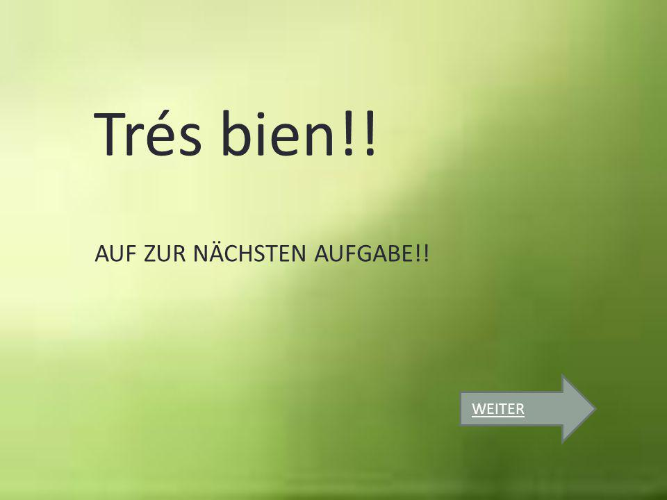 Trés bien!! AUF ZUR NÄCHSTEN AUFGABE!! WEITER