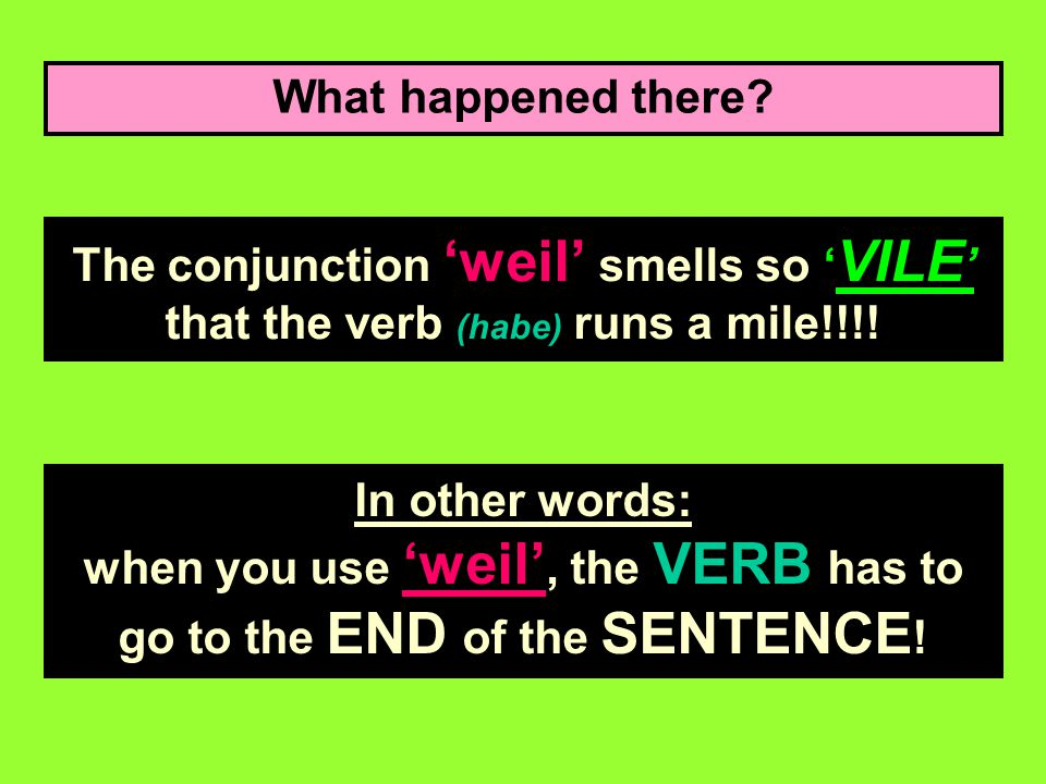 What happened there.The conjunction 'weil' smells so ' VILE ' that the verb (habe) runs a mile!!!.