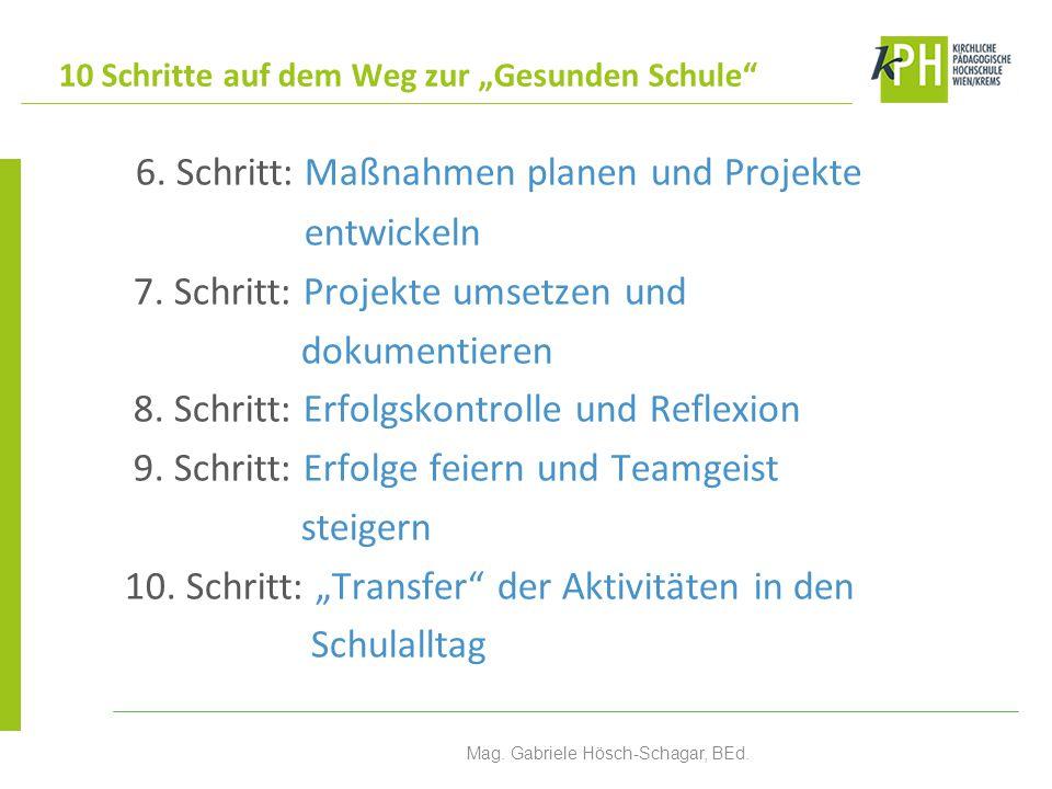 6. Schritt: Maßnahmen planen und Projekte entwickeln 7. Schritt: Projekte umsetzen und dokumentieren 8. Schritt: Erfolgskontrolle und Reflexion 9. Sch