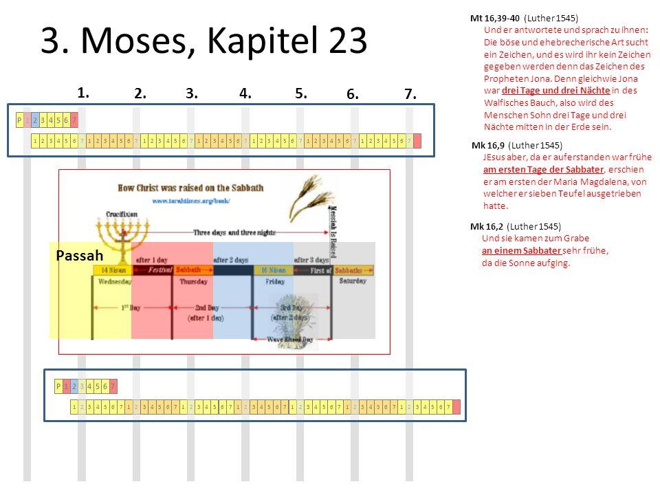 3.Moses, Kapitel 23 2.3.4.5. 6.7. 1.