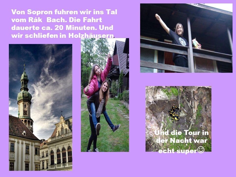 Und die Tour in der Nacht war echt super Von Sopron fuhren wir ins Tal vom Rák Bach.