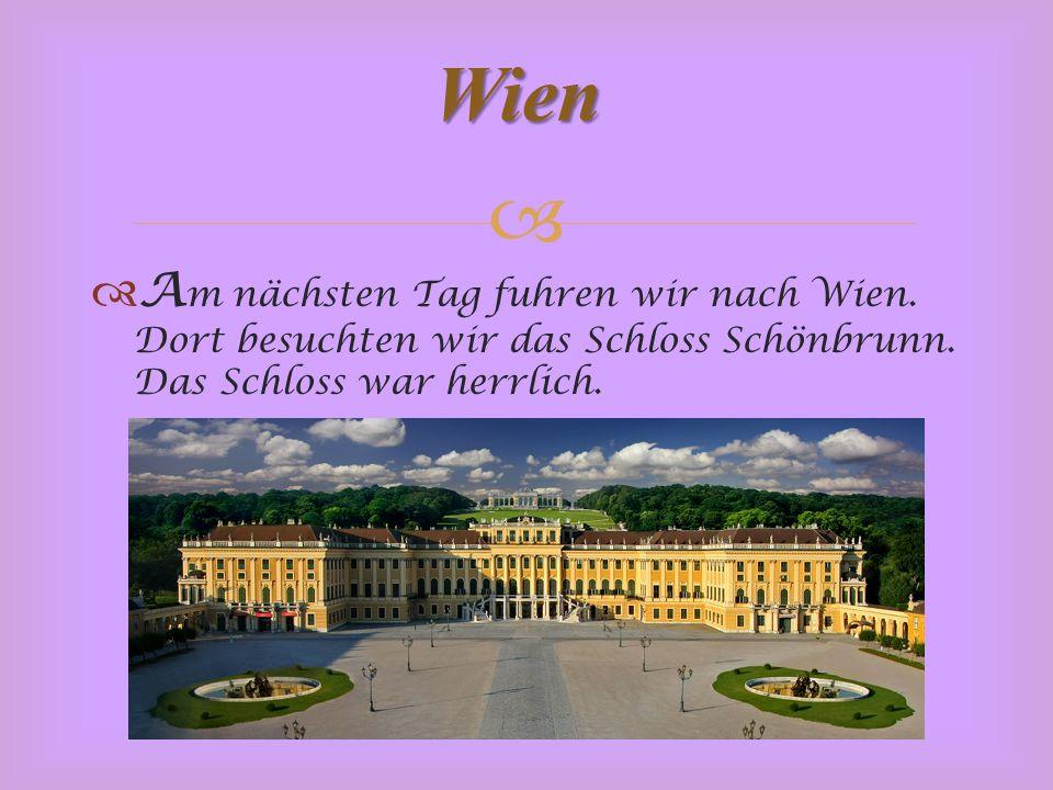   A m nächsten Tag fuhren wir nach Wien. Dort besuchten wir das Schloss Schönbrunn.