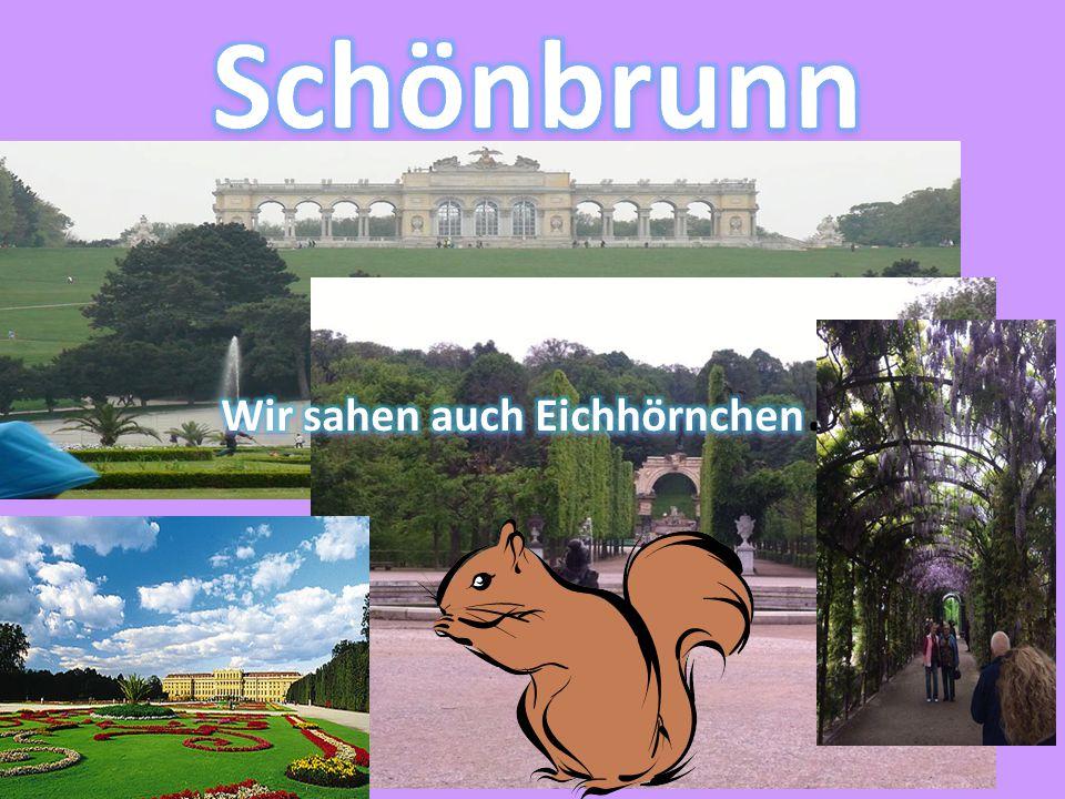 In Schönbrunn machten wir viele Fotos im Park.