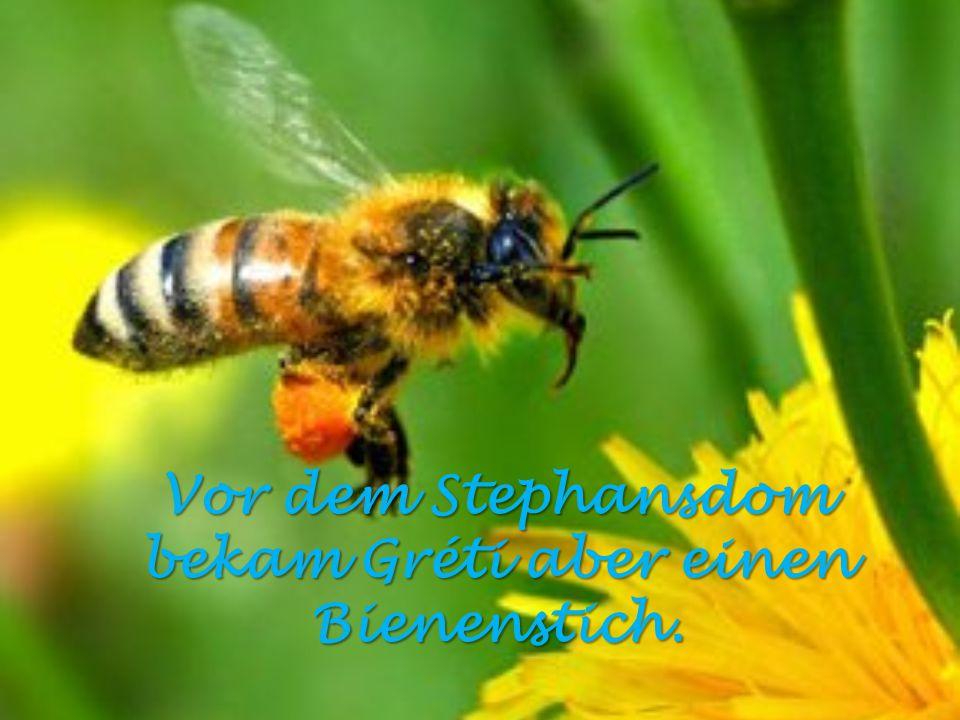 Vor dem Stephansdom bekam Gréti aber einen Bienenstich.
