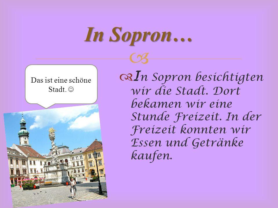   I n Sopron besichtigten wir die Stadt. Dort bekamen wir eine Stunde Freizeit.