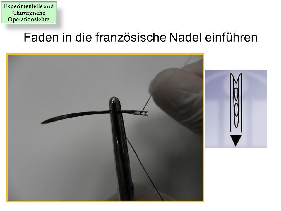 Faden in die französische Nadel einführen Experimentelle und Chirurgische Operationslehre