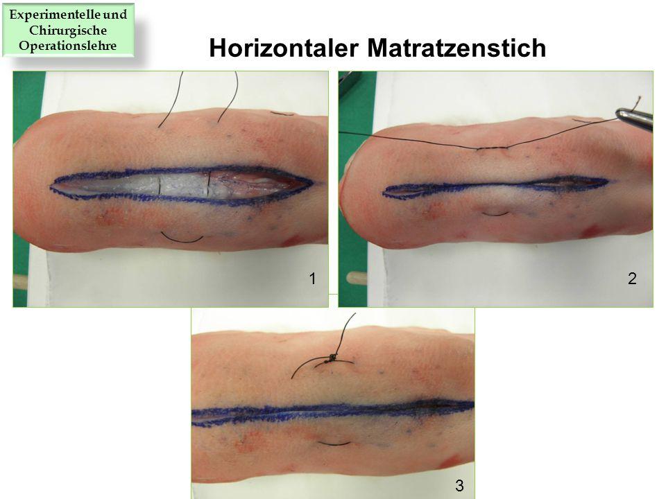12 3 Horizontaler Matratzenstich Experimentelle und Chirurgische Operationslehre