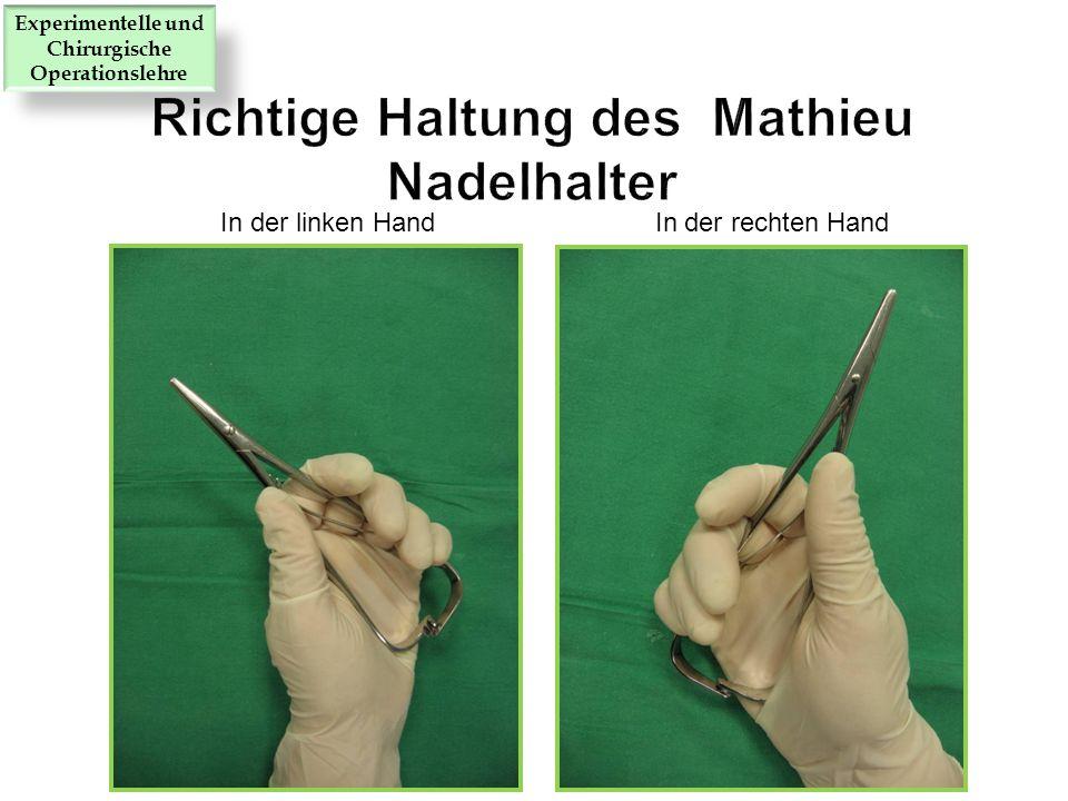 In der linken Hand In der rechten Hand Experimentelle und Chirurgische Operationslehre