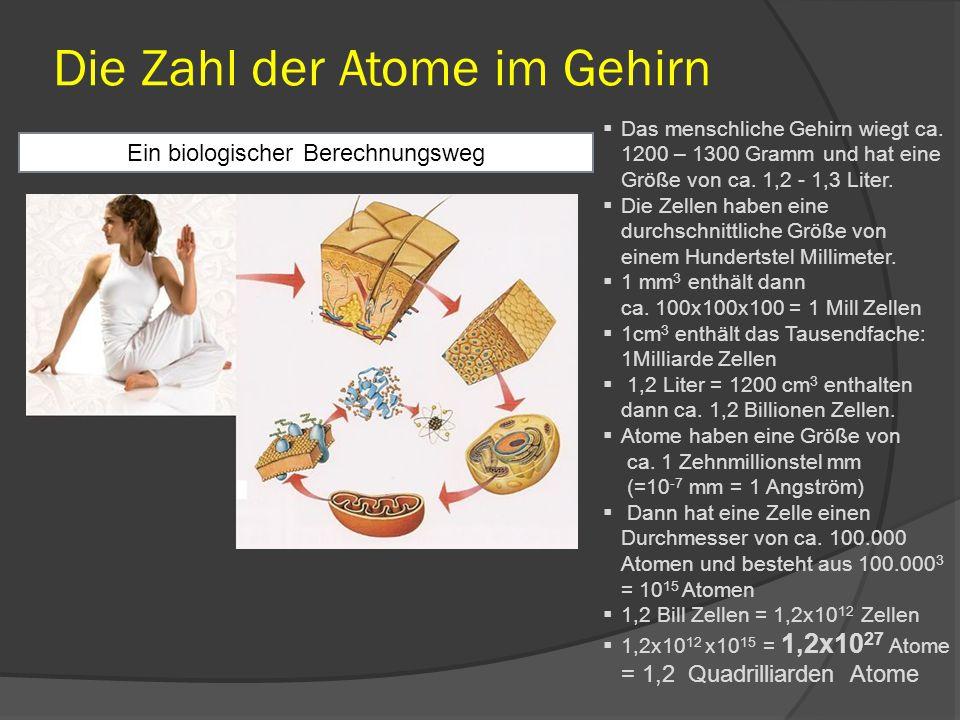 Die häufigsten Elemente im Körper des Menschen (Bei einem Körpergewicht von 70 kg) Daraus ist die durchschnittliche Atomgewichtszahl der Element im Menschen berechenbar: 14,14 ElementChem.