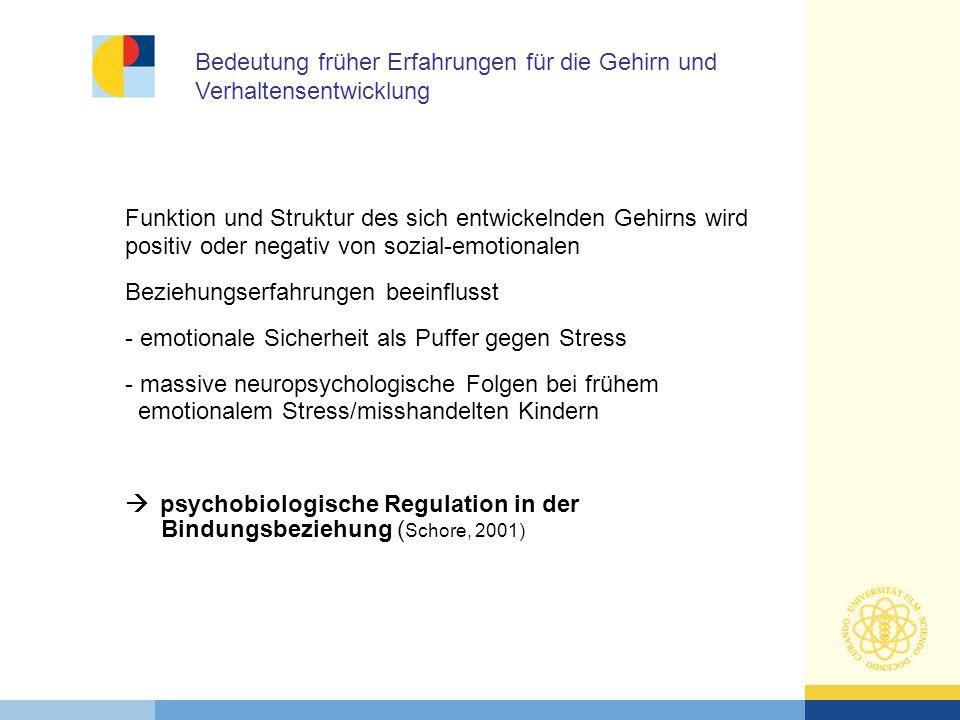 Funktion und Struktur des sich entwickelnden Gehirns wird positiv oder negativ von sozial-emotionalen Beziehungserfahrungen beeinflusst - emotionale S