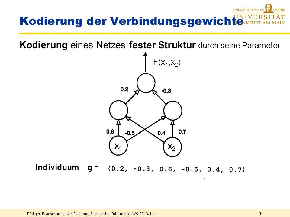 Rüdiger Brause: Adaptive Systeme, Institut für Informatik, WS 2013/14 Evolution neuronaler Netze Genetische Algorithmen Evolutionäre Algorithmen - 15 -