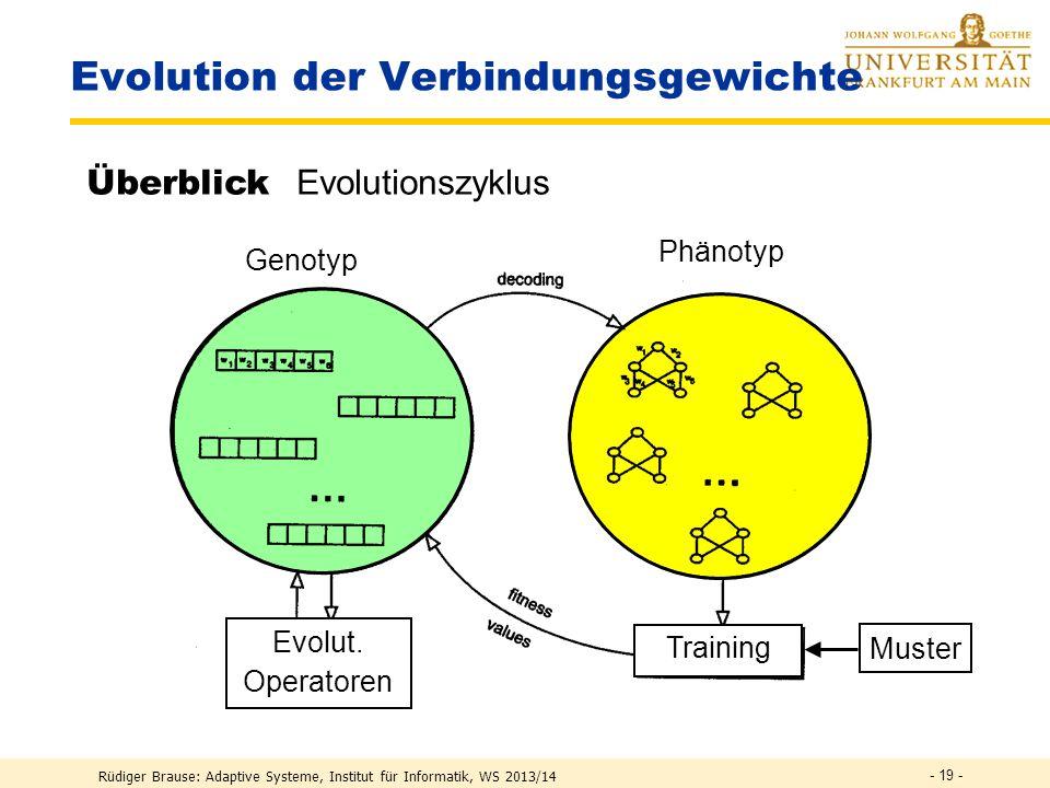 Rüdiger Brause: Adaptive Systeme, Institut für Informatik, WS 2013/14 - 18 - Evolution der Verbindungsgewichte Generation ← 0 Initialisierung der g i