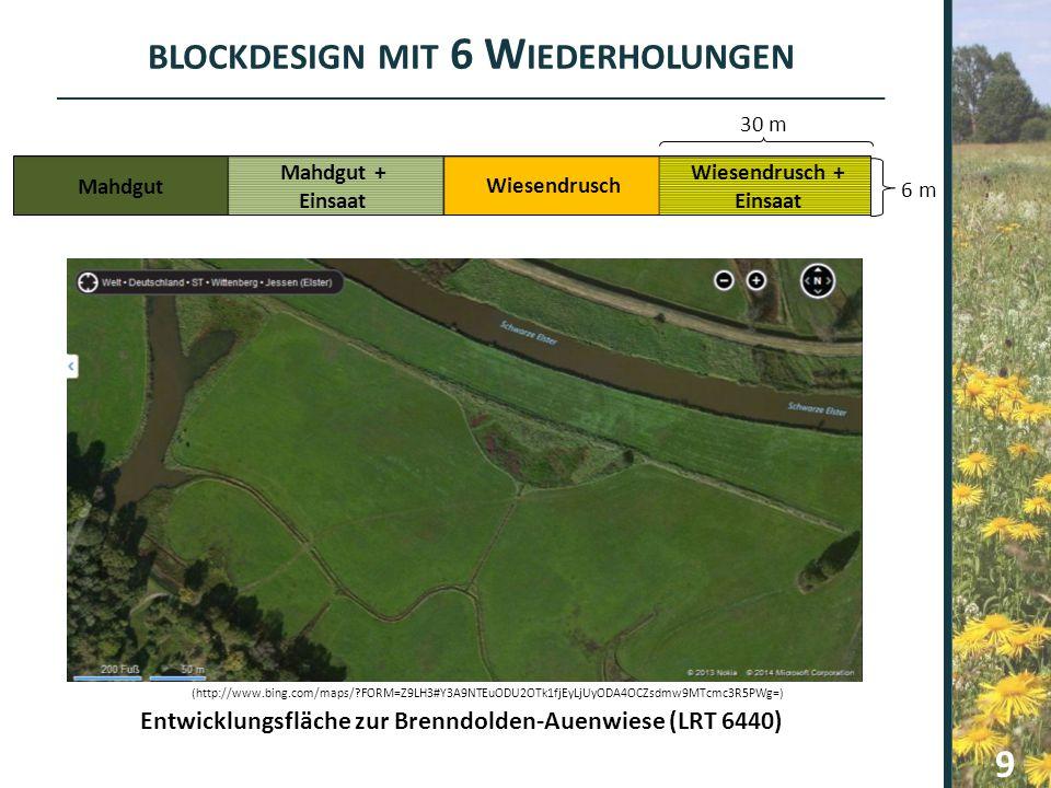 BLOCKDESIGN MIT 6 W IEDERHOLUNGEN Entwicklungsfläche zur Brenndolden-Auenwiese (LRT 6440) Mahdgut Mahdgut + Einsaat Wiesendrusch Wiesendrusch + Einsaa