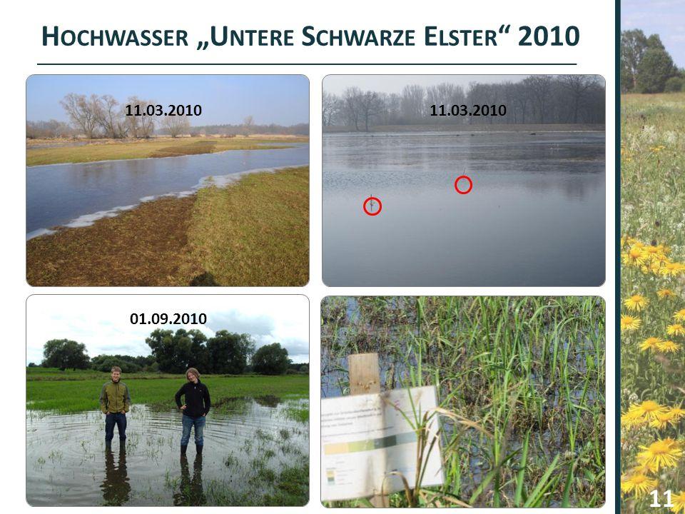 U NTERE S CHWARZE E LSTER – 1 J AHR DANACH 12 Untere Schwarze Elster : Hochwasser 7 mal Fläche überstaut!