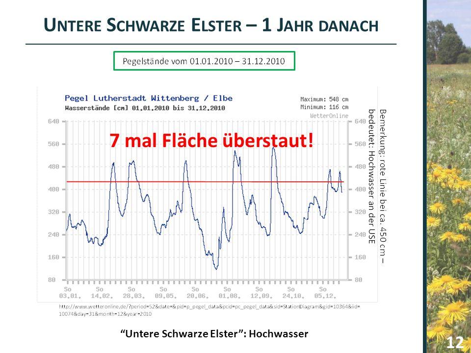 """U NTERE S CHWARZE E LSTER – 1 J AHR DANACH 12 """"Untere Schwarze Elster"""": Hochwasser 7 mal Fläche überstaut!"""